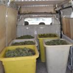 Een deel van de oogst van vandaag in de geïsoleerde bus